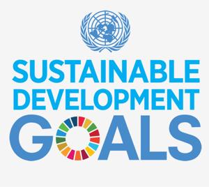 Piattaforma SDG
